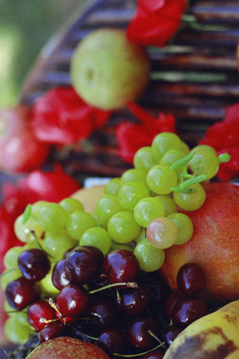 Summer, 2016 Food And Drink Food Healthy Eating Freshness Fruit Wellbeing Close-up Vegetable Indoors  Green Color Olive No People Still Life Ready-to-eat Selective Focus Indulgence Focus On Foreground Berry Fruit Grape Seed Temptation Vegetarian Food Fruit Salad Summer Grapes Springtime Decadence