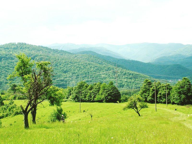 Bulgaria Discrimination Mountains