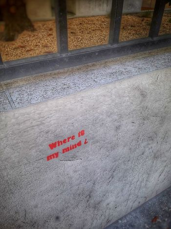 Text Communication Red EyeEm Architecture Street Streetphotography Art Is Everywhere Low Angle View Artphotography Personal Perspective Graffiti Paris City France EyeEm Best Shots Eye4photography  EyeEmBestPics Paint Pixies Graffiti Art Graffiti & Streetart Grafitti Graffitiporn Graffporn