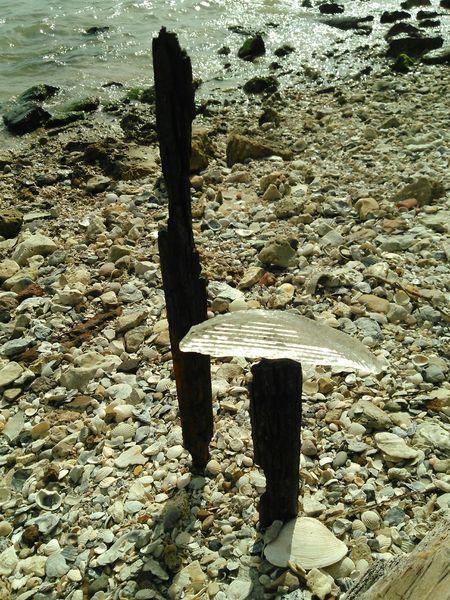 Beach Art Glass And Metal Rust Seashells, Sand And Water Oceanside Showcase: November