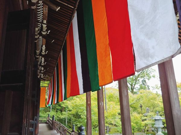 multicolored flags sway in the wind beneath the awning of a temple. Japan Traditional Culture Honoring The Past Temple Shrine Travel Japanese Culture Budhism Rainbow Colors New Experiences Ancestors Ancestry Religious Place Philosophy Tourism Hanging Drying Tree Sky Colorful Fabric