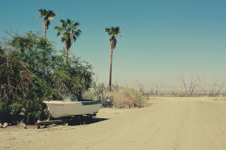 Desert Desolate Palm Tree Salton Sea Boat Trailer Clear Sky Day No People Outdoors Palm Tree Sand Sky Small Boat