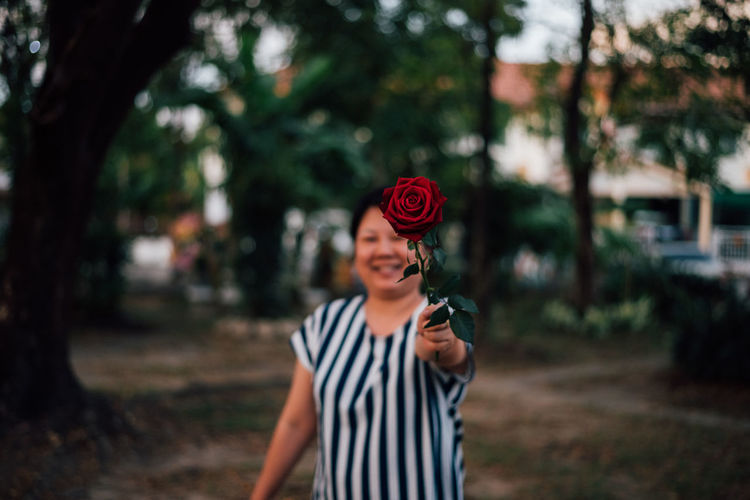 Rose held by woman while standing at park