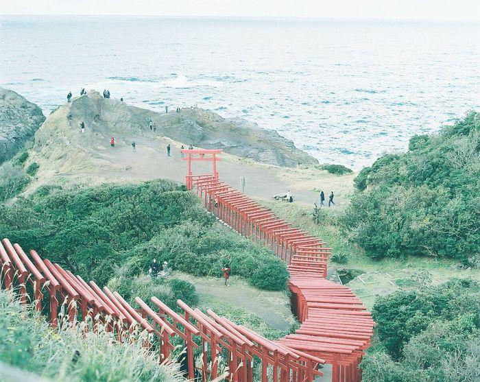 あの日の思い出 EyeEm Best Shots Film Photography PENTAX67 Pro400H 120 Film Introducing Culture Of Japan Which Must Be Left To The Future…… 未来に残す日本の文化