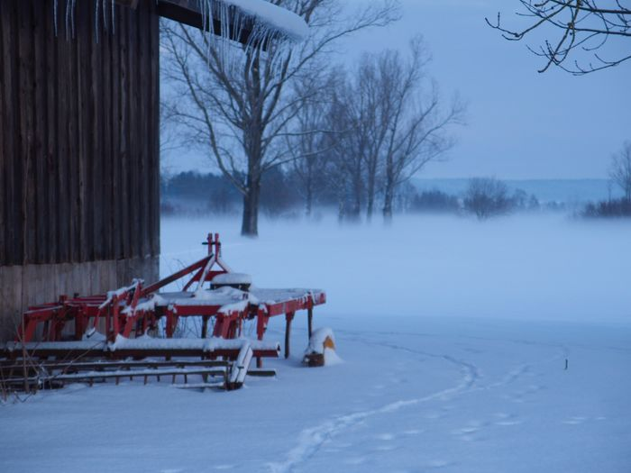 Foggy Morning Wintertime Taking Pictures Snow ❄ Onmywaytowork