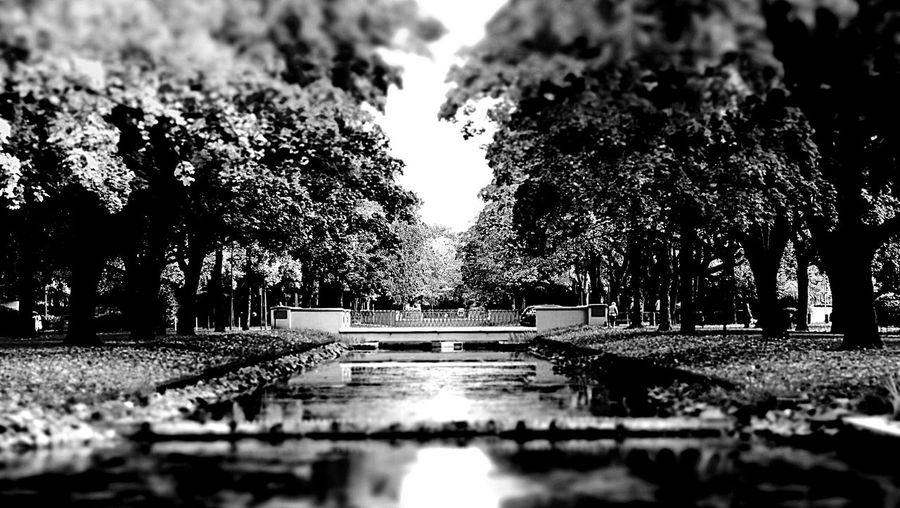 Monochrome Kanal Nature City Trees My Country In A Photo The Great Outdoors - 2016 EyeEm Awards