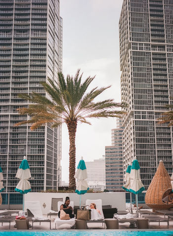 Cityscape of Miami; urban landscape; urban cityscape; film photography; escape; travel; explore Beach City City Life Cityscape Explore Film Photography Florida Miami Oasis Ocean Palm Tree Pool Poolside Relax Symmetry Tall Buildings Travel Travel Destinations Urban Landscape Urban Skyline Vacation Water
