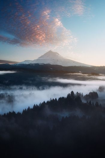 Mount Hood Mountain Beauty In Nature Nature Scenics Tranquil Scene Tranquility Colour Your Horizn Sky Idyllic Mist Hazy  No People Mountain Range Fog Outdoors Landscape Sunset Tree Day