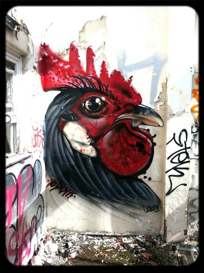 rooster Graffiti in Abandoned Places MentalAsylum by Snowy Boy