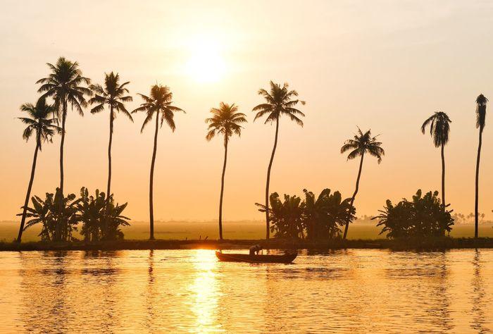 Backwaters of Kerala Kerala Backwaters Keralatourism Kerala Palm Tree Tree Sunset Sun Beauty In Nature Silhouette Tranquil Scene Scenics Nature Water Tranquility Sea Reflection Beach Sunlight No People Sky Outdoors Horizon Over Water Day