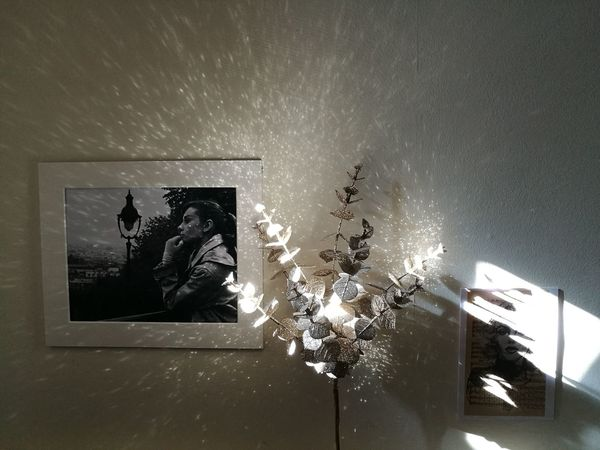 Icons & light Glittering Light And Shadow Cosy Home Bedroom Wall Gold Leaves Shining Refection Shadows & Lights Pictures Photos Night Indoors  Close-up