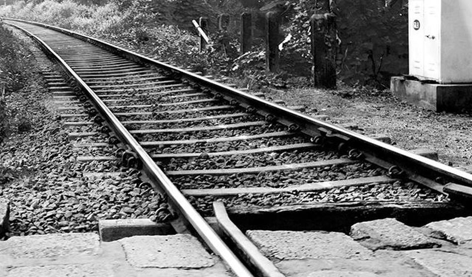Rail Road Picoftheday Photooftheday Photography Photoadaychallenge Pictureoftheday Rail Blackandwhite Greyscale Instapic Storiesofindia _iso India Kerela Vscocamgram Vscocam VSCO