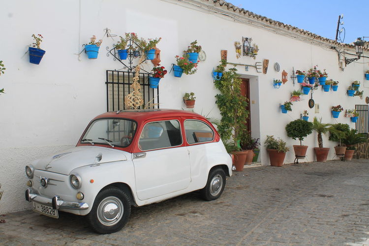 Car and plants No Filters Or Effects No Filter, No Edit, Just Photography Architecture Building Exterior Built Structure Car Cazorla Cazorla Jaen Day Land Vehicle Mode Of Transport No People Outdoors Stationary Transportation