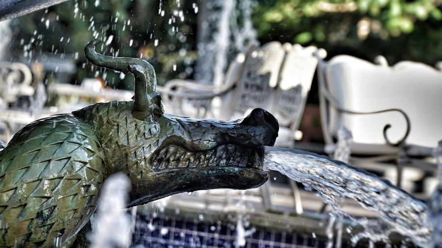 Close-up of horse statue by water