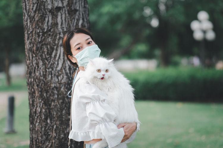 Portrait of white cat on tree trunk
