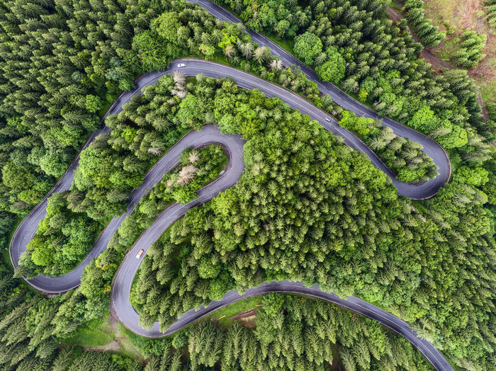 Aerial view of a road crossing a forest in photography with road and green Shot EyeEmNewHere Drone  Road Romania Aerial Landscape Aerial Photography Aerial View Day Dronephotography Droneshot Forest Forest Photography Grinder High Angle View Mood Nature No People Outdoors Road Aerial View Romanian Roads