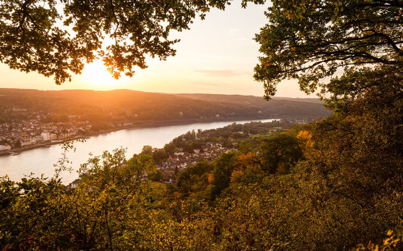 Valley of the River Rhein, Erpeler Ley, Germany Bonn Rhine Erpel Landscape Nature No People Outdoors Rhine River Scenics Sunset Tranquility Tree Viewpoint