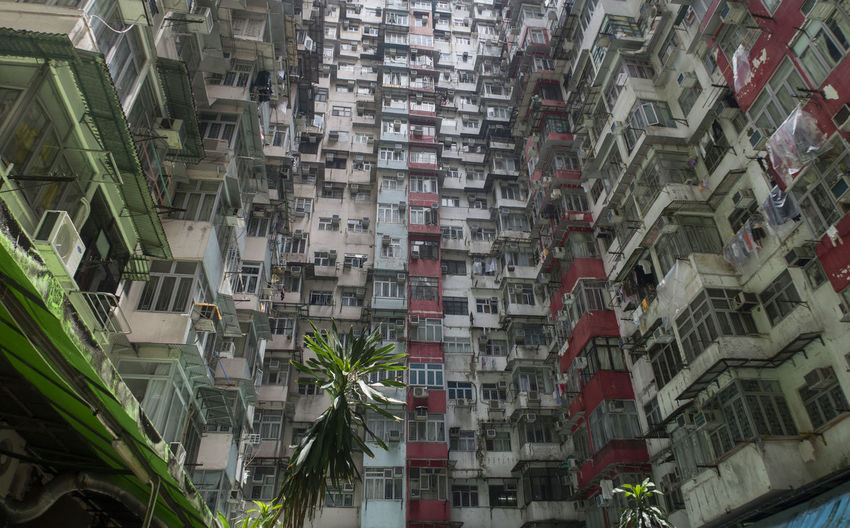 Hong Kong HongKong Apartment Architecture Building Building Exterior Built Structure City City Life Day Full Frame Growth Location Low Angle View Nature Neighborhood No People Outdoors Place Residential District Roof Street Window
