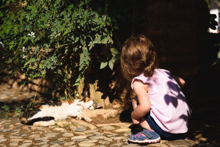 Little child watching a sleeping cat under a hedge Children Exploring The Week On EyeEm Animals Cats Child Childhood Childhood Memories Childsplay Day First Eyeem Photo Leisure Activity Outside Watching This Is Family