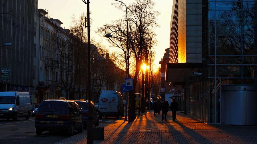 Cars on city street at sunset