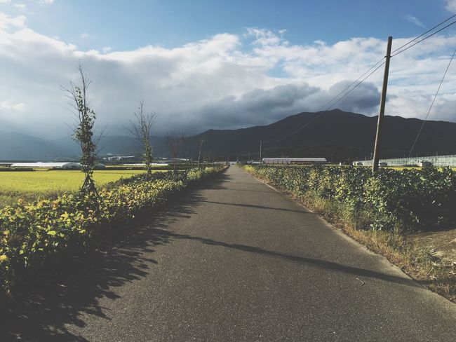Sky The Way Forward Day Road Tree Nature Cloud - Sky No People Transportation Tranquil Scene Outdoors Tranquility Landscape Beauty In Nature Scenics Mountain Growth Grass