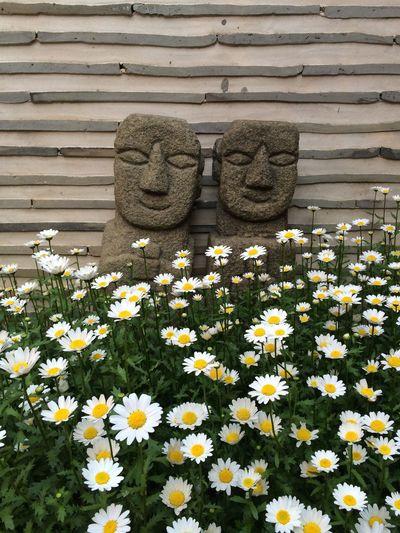 Korea Tradition Flowers Flower 한국 전통 꽃 한국전통
