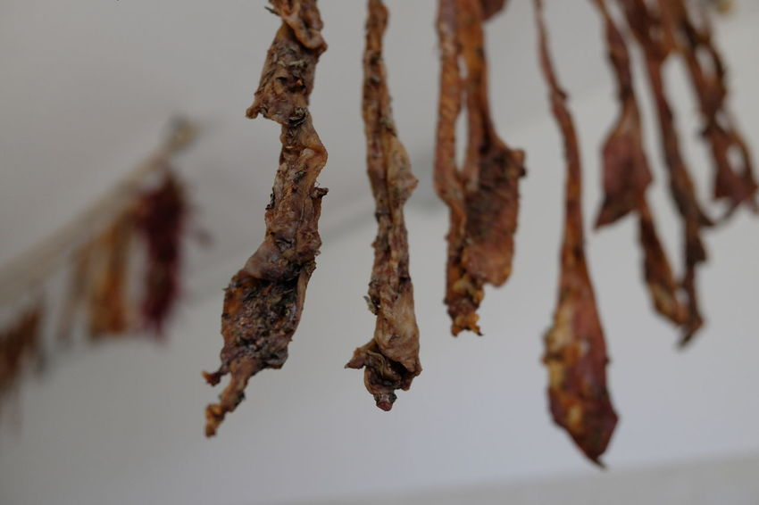 dried pork casings Homemade Food Pork Preserved Dried Dry Fat Food Gut Hand Hanging Meat Molise Noglie Nöje Tipycal Traditional