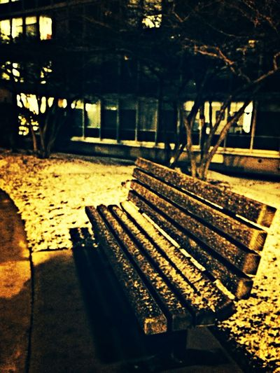 Night Light Nightphotography Bench ❄️1st Snow