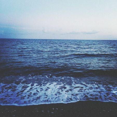 Nature Photography Oceanographic