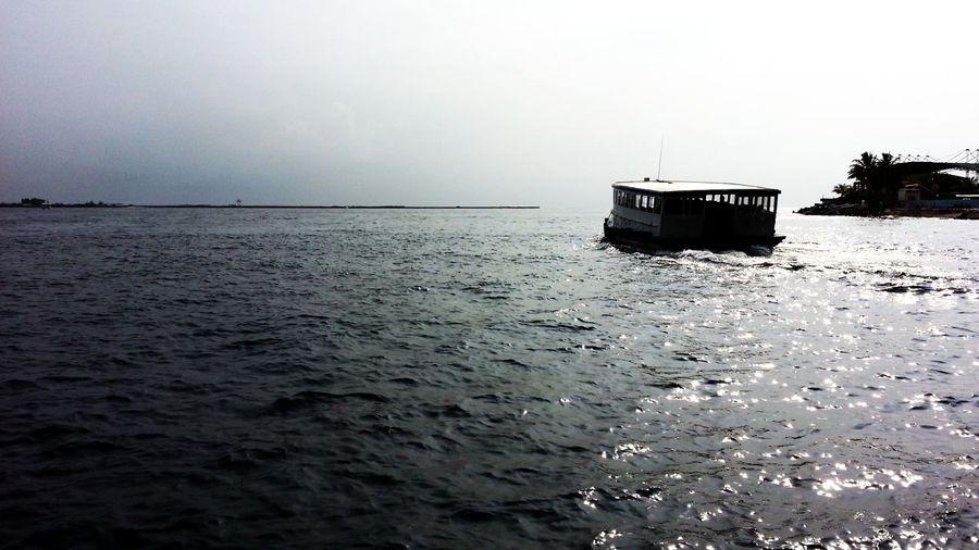 Ferry Taking Photos Sunrise