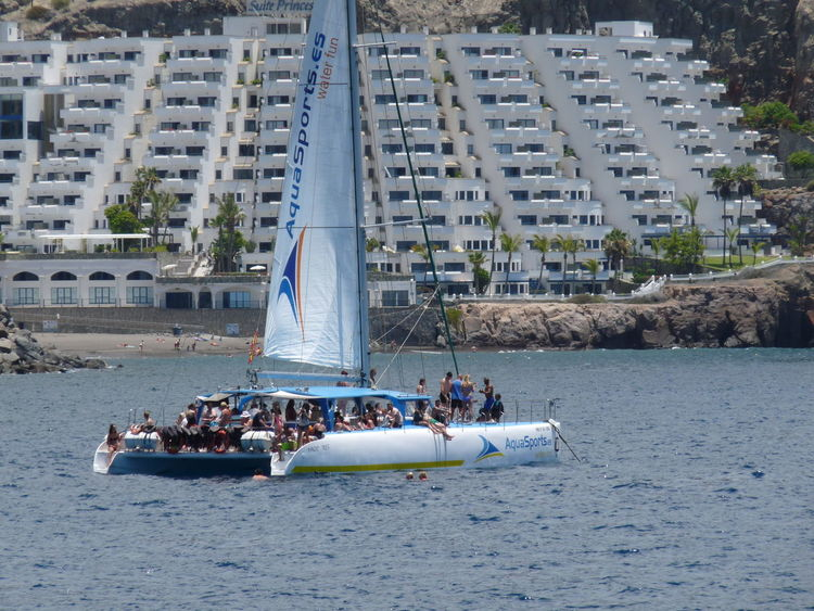 Competition Hollidays Large Group Of People People Have Fun Sailing