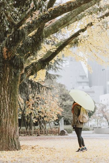 Rear view of woman with umbrella walking on rainy day