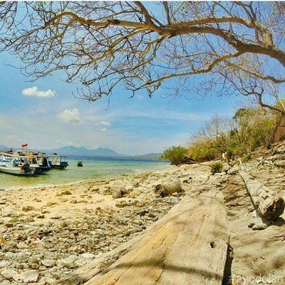 Pulau Menjangan - Banyuwangi INDONESIA Beach Ayodolan