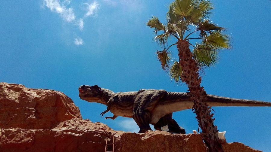 trex Jurassic Jurassic World T Rex Dinosaur T Rex  Dinosaurs Tree Safari Animals Sky Animal Themes