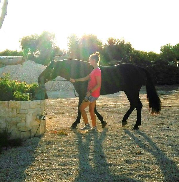 I Love Horses My Horse Fashion Follow4follow Service Animals Followme Love Meandmyhorse Queen👑 Ladyphotographerofthemonth