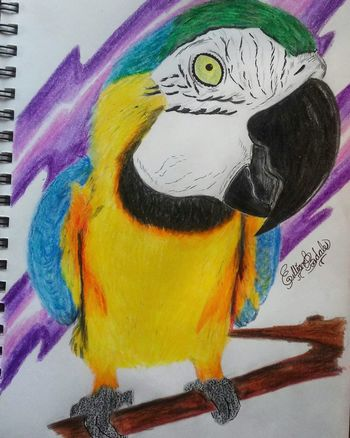 Hanging Out Relaxing Art Taking Photos My Passion ArtWork Photo Now Drawings Artist Hi! Artistic Check This Out Sharpie Prismacolor Art, Drawing, Creativity Finish Work Staedtler Hello World My Hobby Arte Colors Colorful