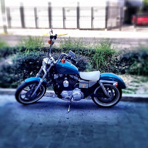 Harley Harleydavidson Igers Igersgdl Igersmexico Igersmty Vintage Moto Cool 4s Iphoto IPhone