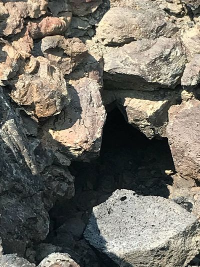 Craters of the Moon Cave Entrance Craters Of The Moon Idaho EyeEmNewHere Full Frame Rock Sunlight Backgrounds Day Nature High Angle View Rock Formation Outdoors Physical Geography EyeEmNewHere EyeEmNewHere