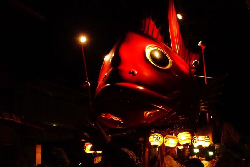 どや Cultures Fish Yamakasa 山笠 唐津くんち Karatsukunchi Festival 祭 Matsuri Night