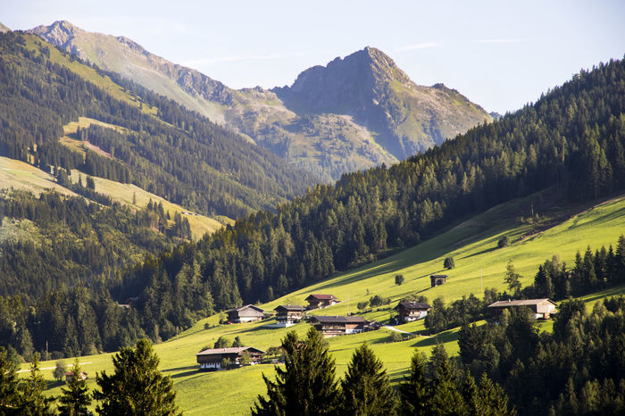Alpbach, a town in western Austria in the state of Tyrol Alpbach Alpbachtal Austria Austria Photos Austria Mountains Austria ❤ Austrian Alps Austrian Nature Austrian Beauty In Nature Day Grass Green Color High Angle View Landscape Mountain Mountain Range Nature No People Outdoors Scenics Sky Tree