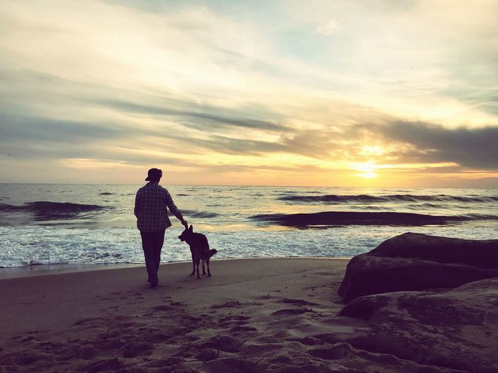 Rear view of man with dog at beach against sky during sunset