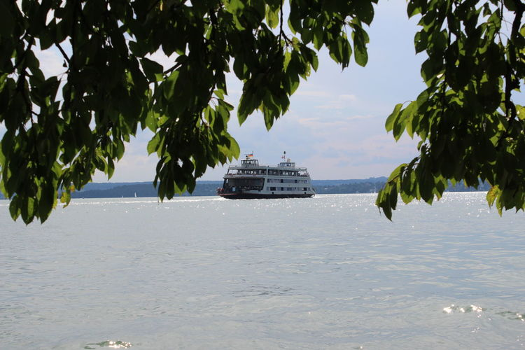 Leaves against ferry sailing on bodensee lake
