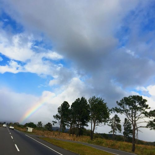 Live For The Story Tree Sky Nature Road Beauty In Nature Outdoors Scenics The Way Forward Summer Sun First Eyeem Photo Tree Cloud - Sky Rainbow Scenics - Nature Beauty In Nature Road No People Plant Nature