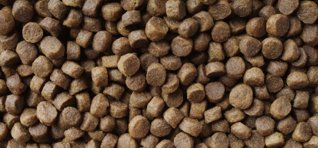 Dry food for