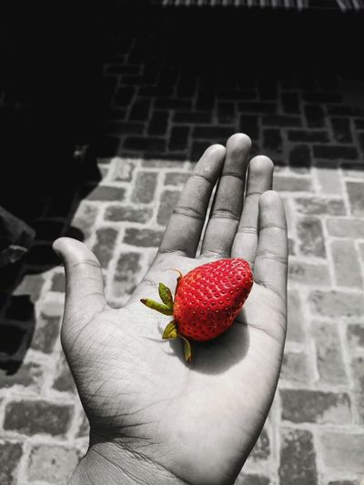 Human Hand Human Body Part Human Finger Strawberry Red One Person Food Food And Drink Holding Fruit People Close-up Healthy Eating Focus On Foreground Freshness Outdoors Real People Day Sweet Food Adult