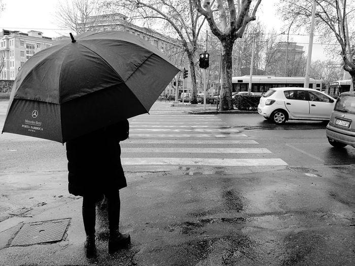 Man with umbrella on wet street during rainy season