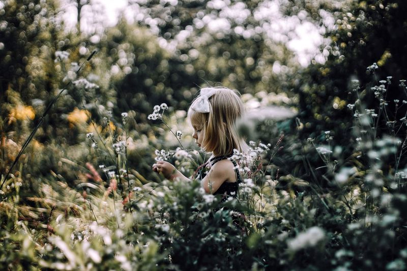 Girl in wild flowers. Blond Hair Flower Long Hair Selective Focus Young Adult One Person Nature Outdoors One Young Woman Only Only Women Young Women Tree Plant Beautiful Woman One Woman Only Women Beauty Day Adult People
