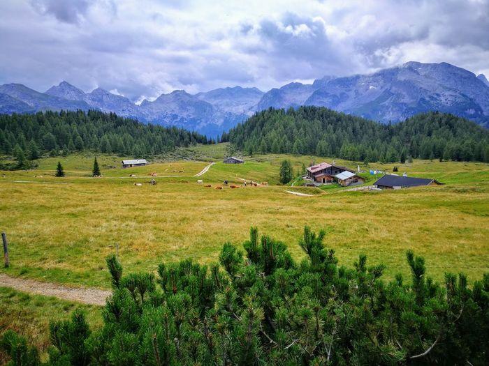 Gotzenalm Alps