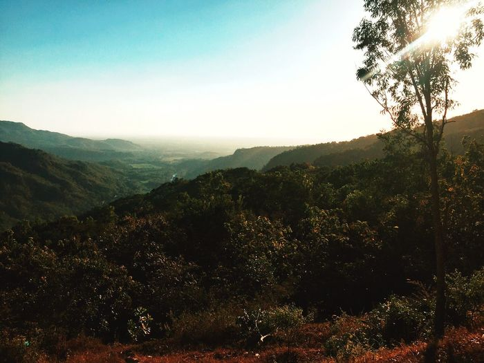 Sunries Nature Mountain Landscape Beauty In Nature Outdoors Sunrise First Eyeem Photo Photography INDONESIA