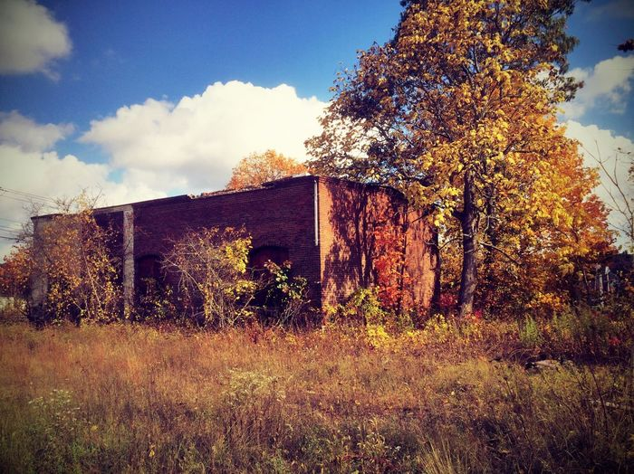 Abandoned Warehouse (Back of Building) IPhoneography Artchitecture Urbanexploration Starmatic Family